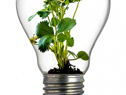 Innovation responsable